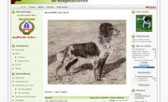 Wachtelhunde Forum