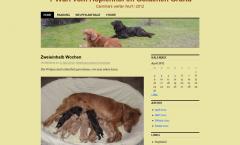 Wurf Tagebücher bis 2012