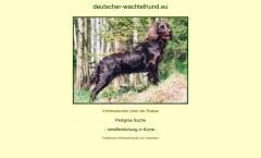 deutscher-wachtelhund.eu